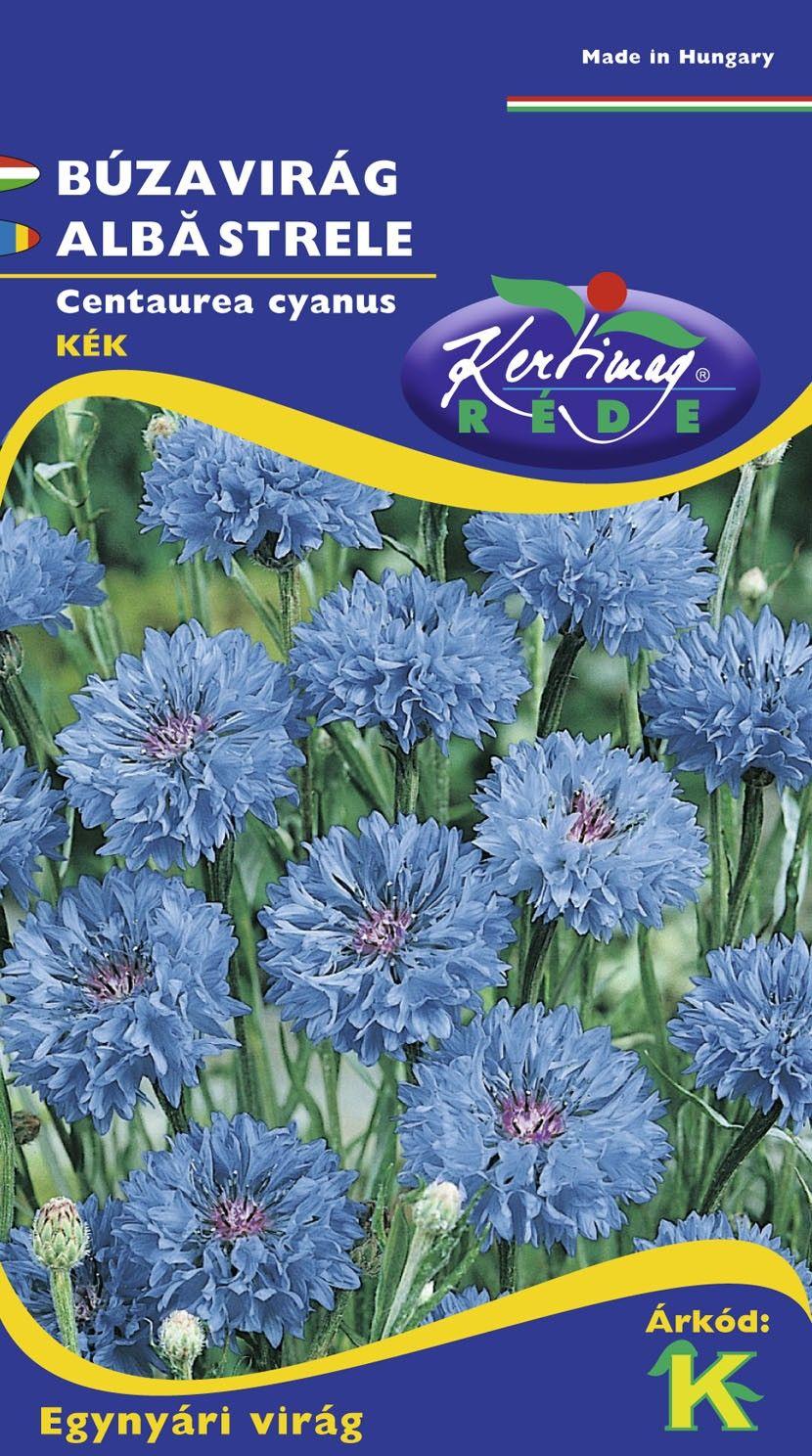Seminte de Albastrele - KM - Centaurea cyanus