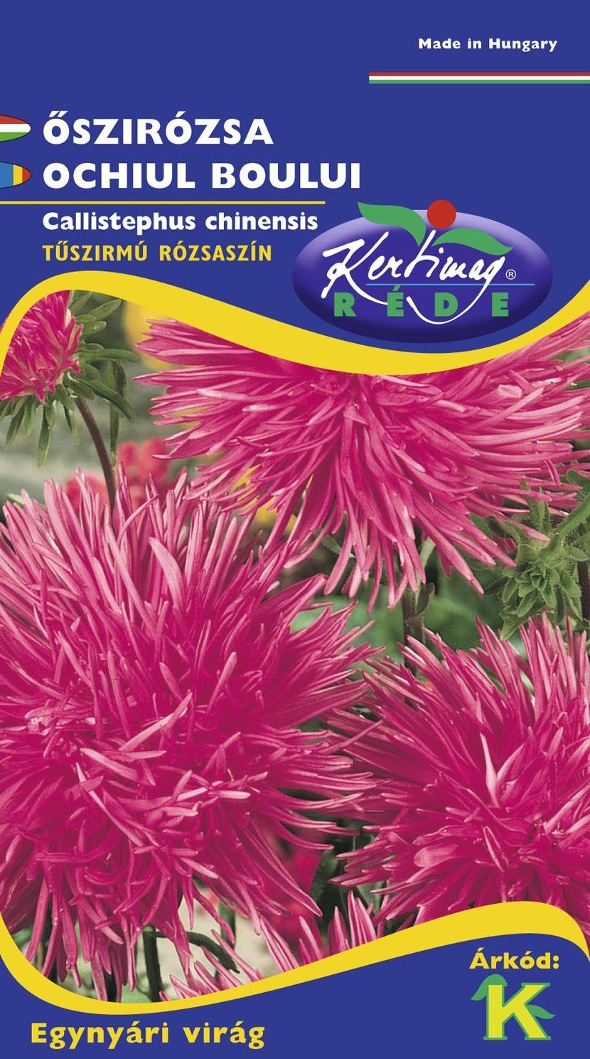Seminte de Ochiul boului Strahlenaster roz - KM - Callistephus chinensis
