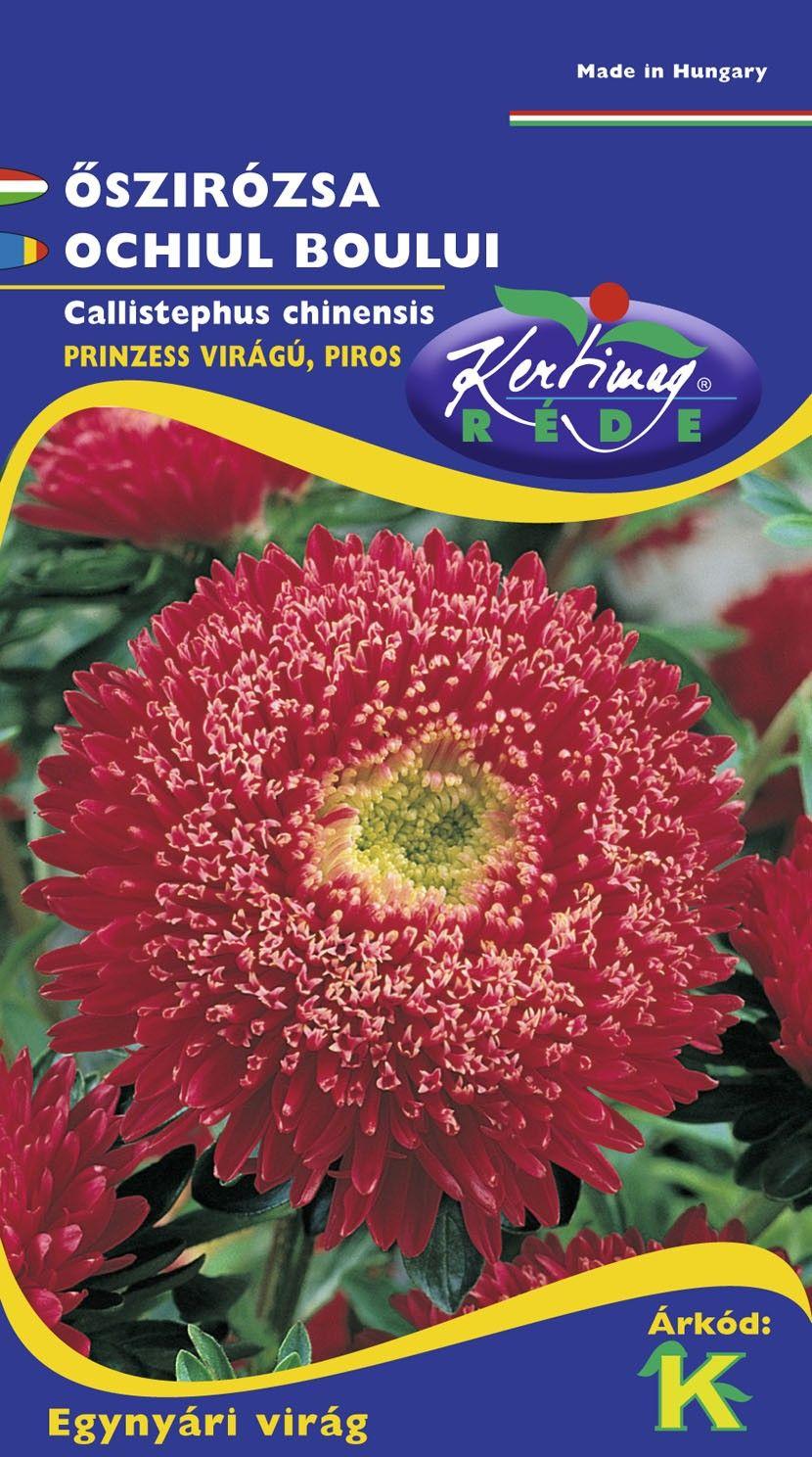 Seminte de Ochiul boului Prinzess rosu - KM - Callistephus chinensis