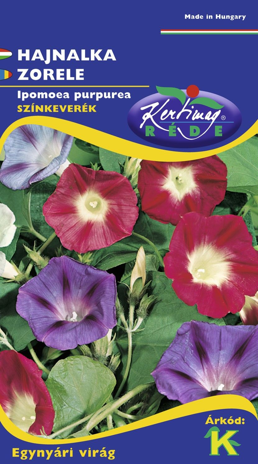 Seminte de Zorele urcatoare mix - KM - Ipomoea purpurea