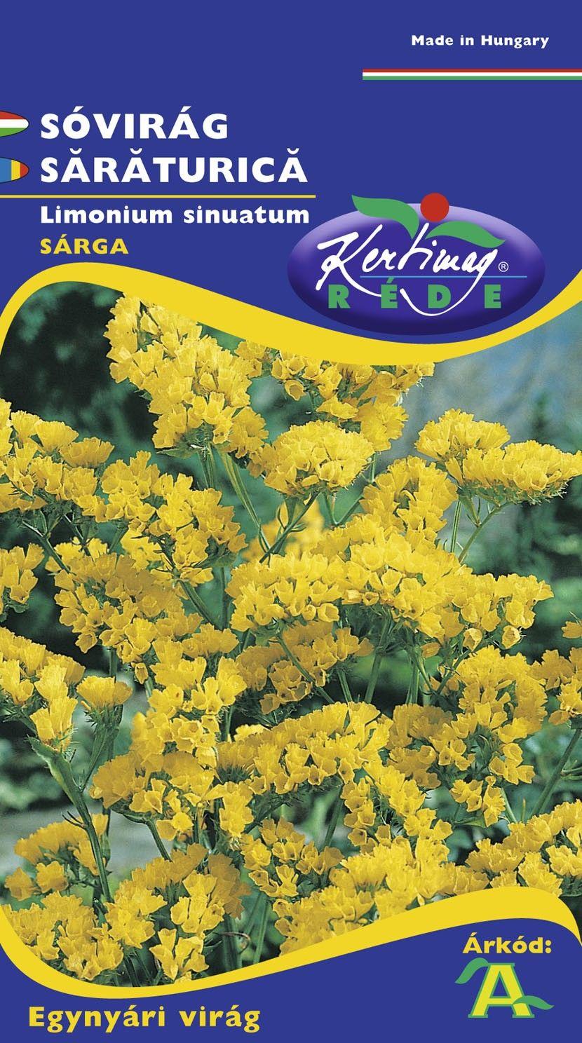 Seminte de Saraturica galbena - KM - Limonium sinuatum