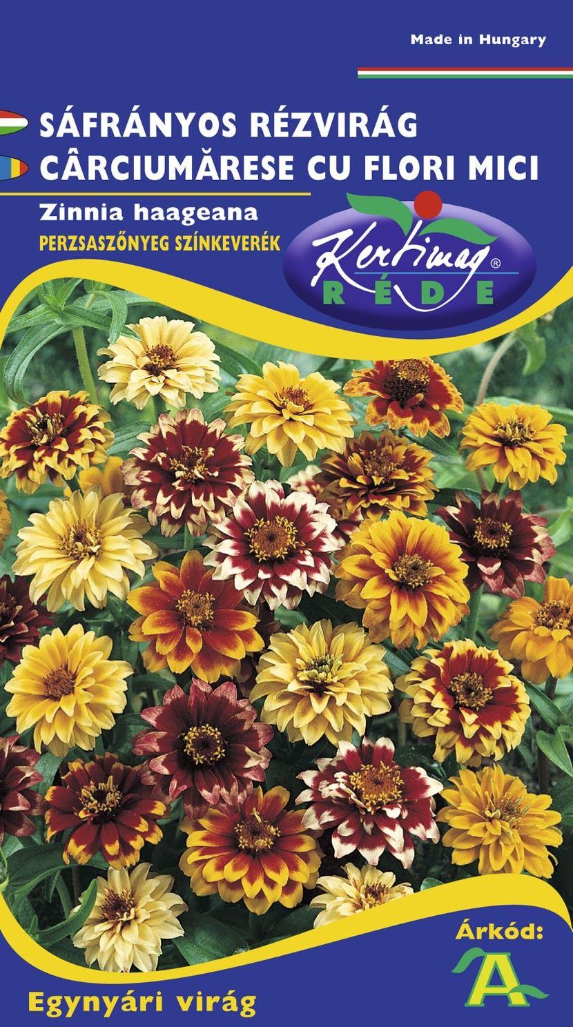 Seminte de Carciumarese cu flori mici mix - KM - Zinnia haageana