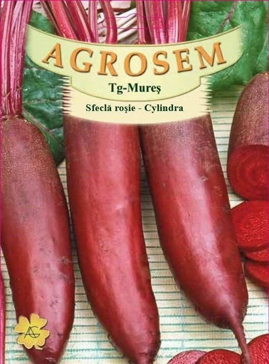 Seminte de Sfecla rosie Cylindra 500g - AS - Beta vulgaris var. conditiva