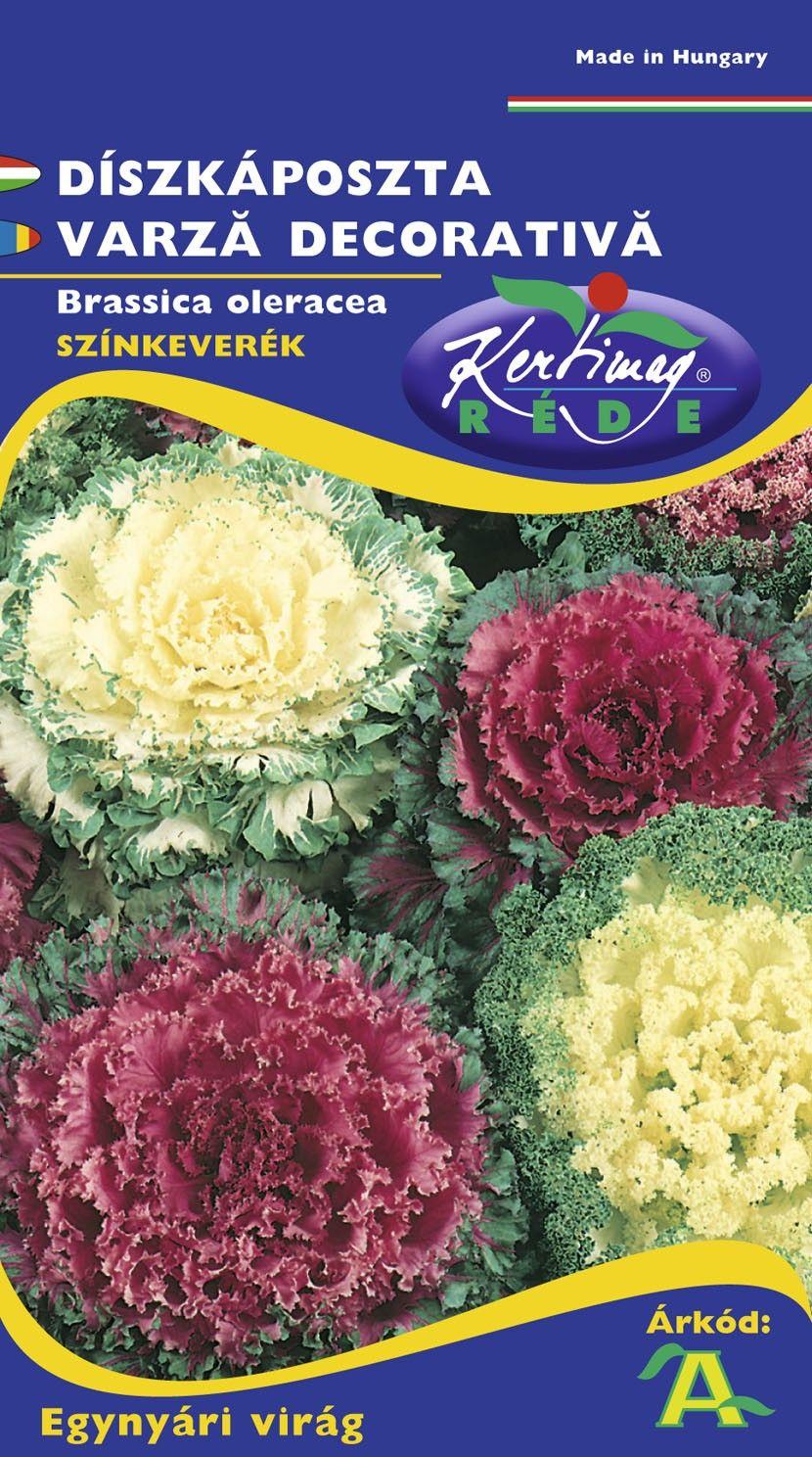 Seminte de Varza decorativa mix - KM - Brassica oleracea