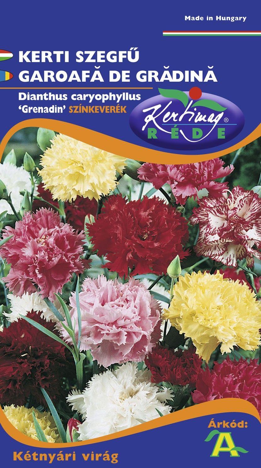Seminte de Garoafa de gradina Grenadin mix - KM - Dianthus caryophyllus