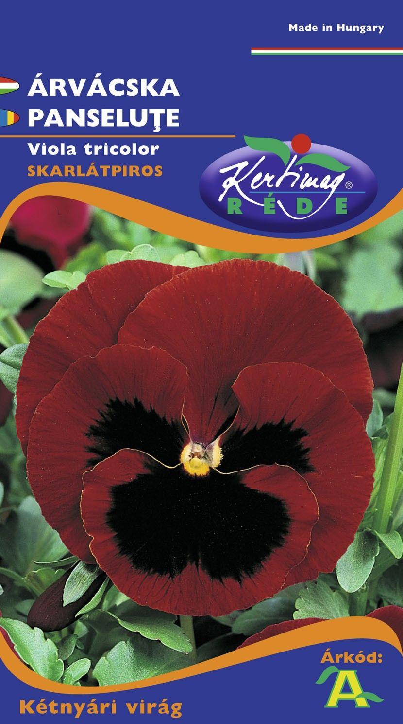 Seminte de Panselute rosu scarlat cu ochi - KM - Viola tricolor