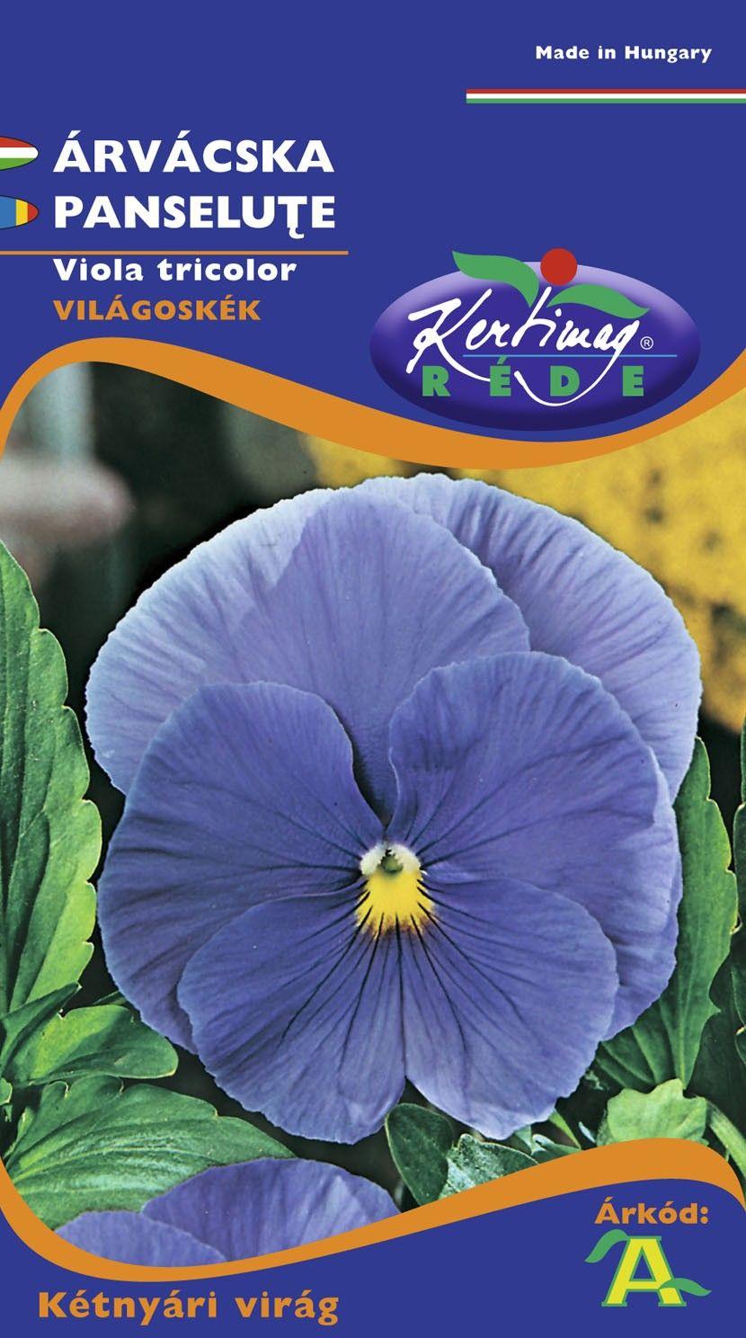 Seminte de Panselute albastru deschis - KM - Viola tricolor