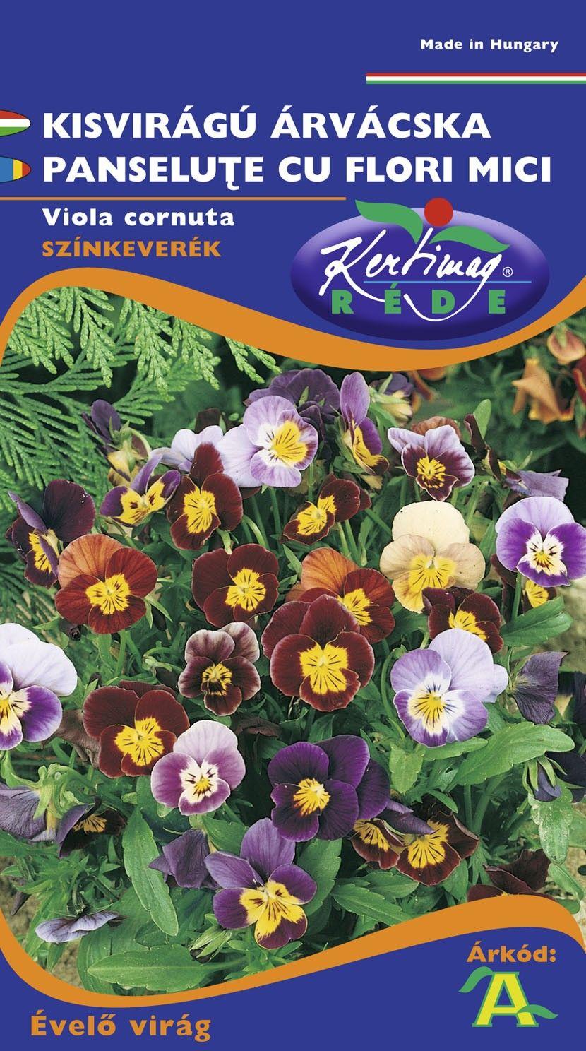 Seminte de Panselute cu flori mici - KM - Viola tricolor