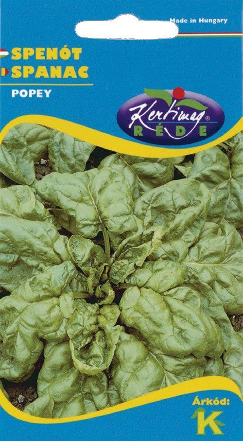 Seminte de Spanac Popey - KM - Spinacia oleracea