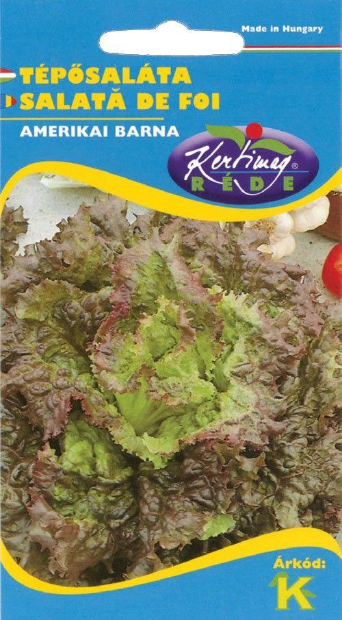 Seminte de Salata Amerikanischer brauner - KM - Lactuca sativa convar. secalina