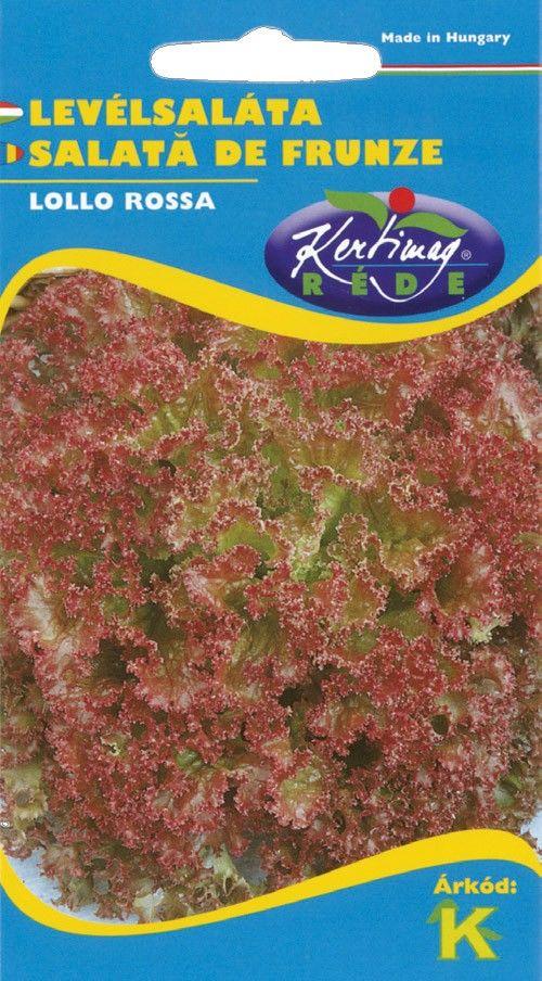 Seminte de Salata creata Lollo Rossa - KM - Lactuca sativa var. capitata