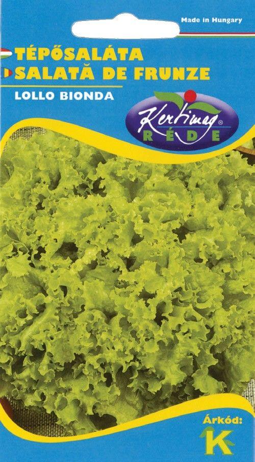 Seminte de Salata Lollo Bionda - KM - Lactuca sativa var. capitata