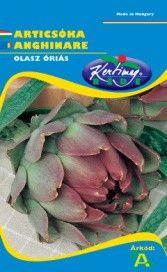 Seminte de Anghinare Violetta di Romagna - KM - Cynara scolymus