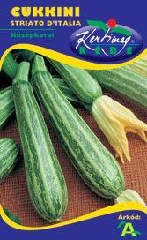 Seminte de Zucchini Striat de Italia - KM - Cucurbita pepo convar. giromontiina