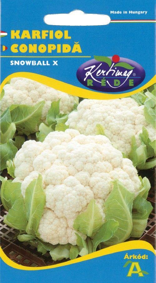 Seminte de Conopida Snowball X - KM - Brassica cretica convar botrytis