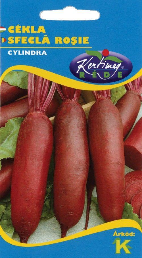 Seminte de Sfecla rosie Cylindra - KM - Beta vulgaris conditiva