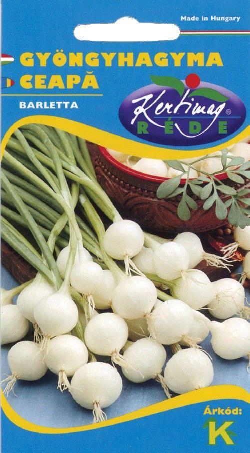 Seminte de Ceapa (esalota) Barletta - KM - Allium cepa