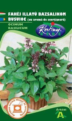 Seminte de Busuioc cu aroma de scortisoara - KM - Ocimum basilicum