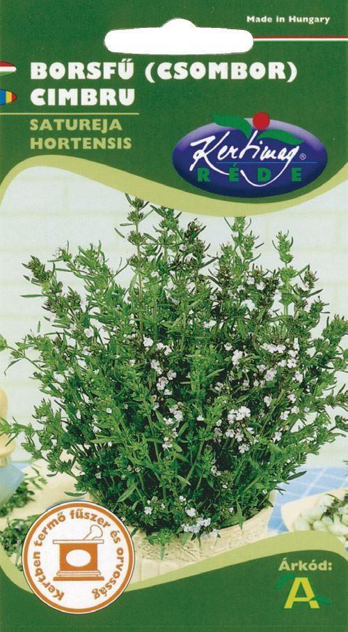 Seminte de Cimbru - KM - Satureja hortensis
