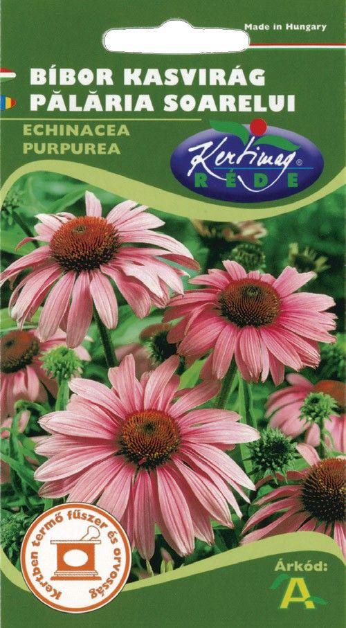 Seminte de Palaria soarelui - KM - Echinaceea purpurea