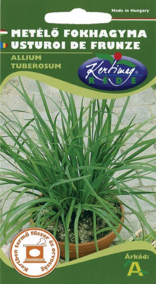 Seminte de Usturoi de frunze - KM - Allium tuberosum