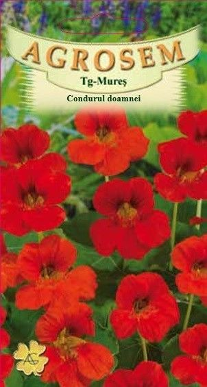 Seminte de Condurul doamnei rosu Alaska Scarlet - AS - Tropaeolum nanum