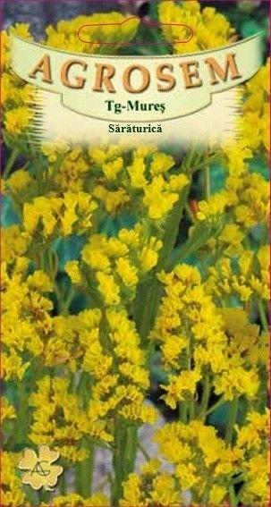 Seminte de Saraturica galbena - AS - Limonium sinuatum