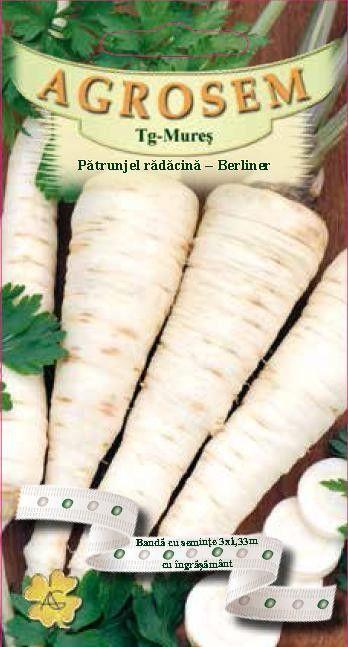 Seminte de Patrunjel radacina Berliner pe banda cu ingrasamant - AS - Petroselinum crispum conv. radicosum