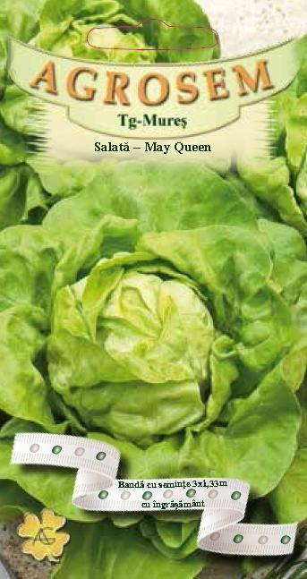 Seminte de Salata pe banda cu ingrasamant May Queen - AS - Lactuca sativa