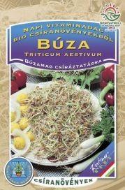 Seminte de Grau pentru germinat 50g - KM - Triticum aestivum