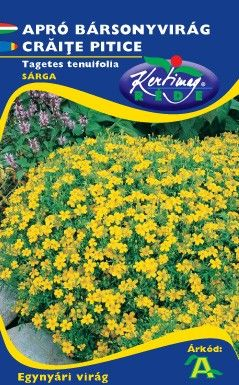 Seminte de Craite pitice galbene - KM - Tagetes tenuifolia