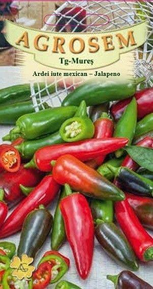 Seminte de Ardei iute mexican Jalapeno - AS - Capsicum annuum
