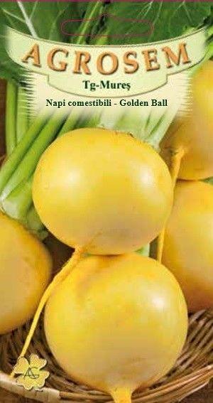 Seminte de Napi comestibili Golden Ball - AS - Brassica rapa