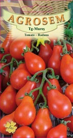 Seminte de Tomate para Radana - AS - Lycopersicon esculentum