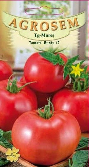 Seminte de Tomate Buzau 47 - AS - Lycopersicon esculentum