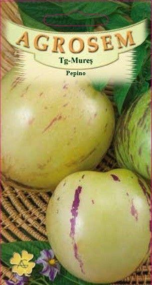 Seminte de Pepino - AS - Solanum muricatum