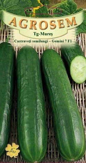Seminte de Castraveti semilungi Gemini 7 F1 - AS - Cucumis sativus