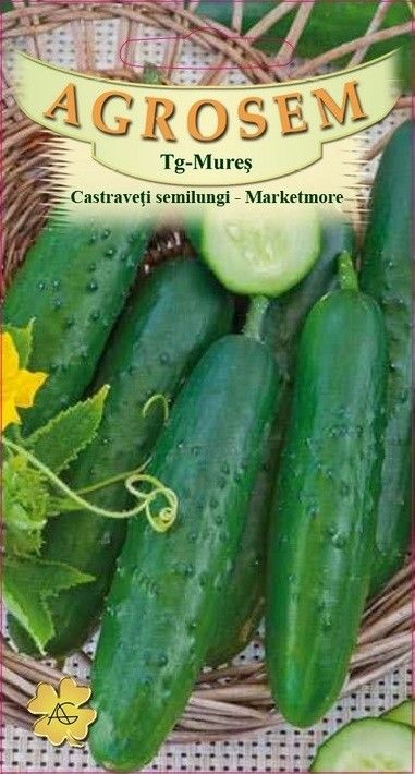 Seminte de Castraveti semilungi Marketmore - BigPack - AS - Cucumis sativus