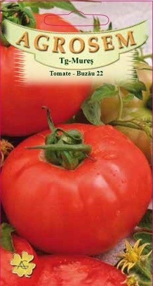 Seminte de Tomate Buzau 22 - BigPack - AS - Lycopersicon esculentum