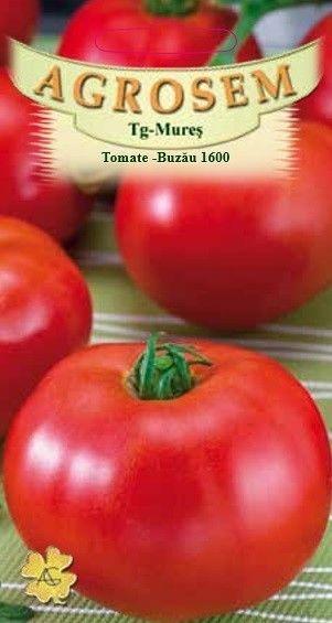 Seminte de Tomate Buzau 1600 - BigPack - AS - Lycopersicon esculentum