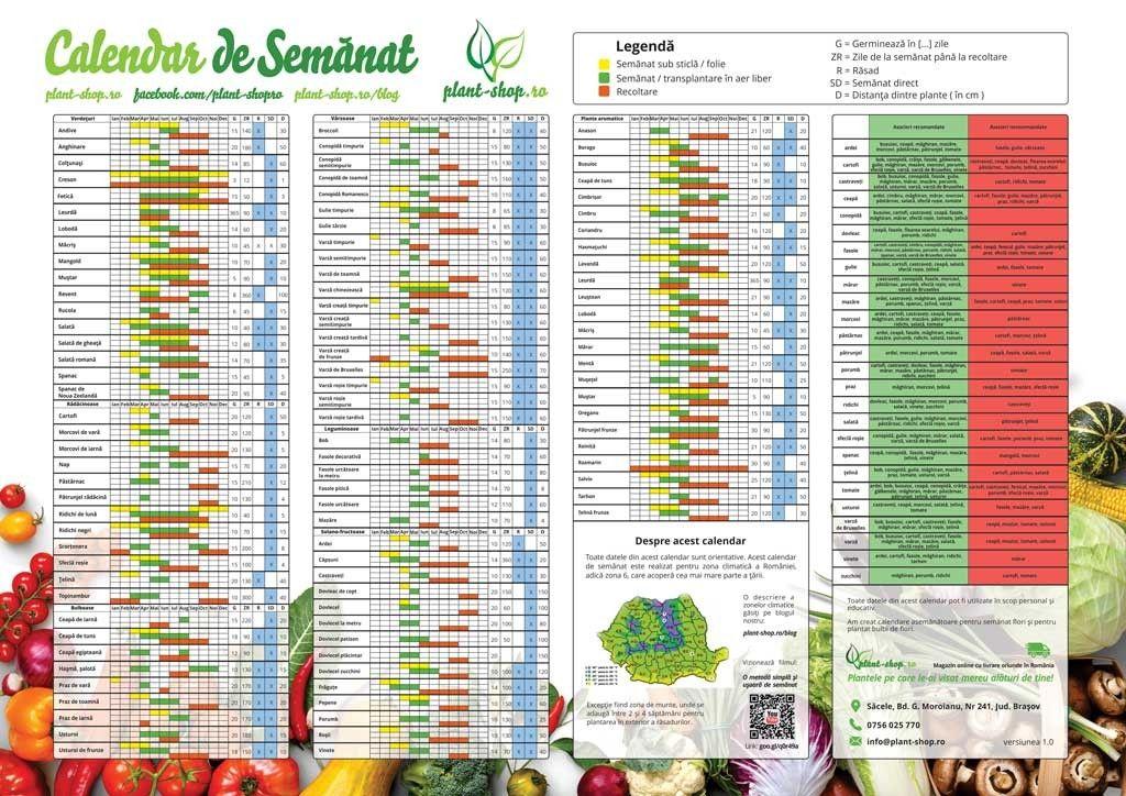 Calendar de semanat legume A3 color - Plant-Shop