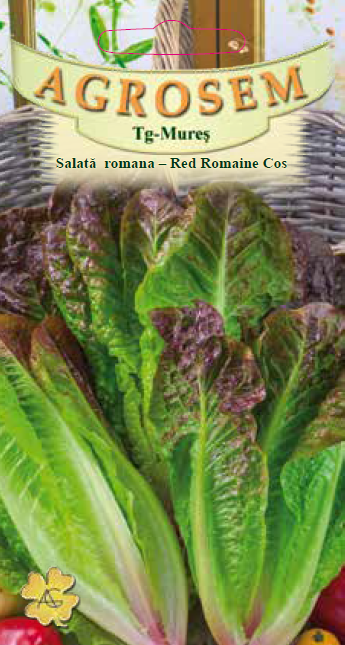 Seminte de Salata romana - Red Romaine Cos - AS - Lactuca sativa