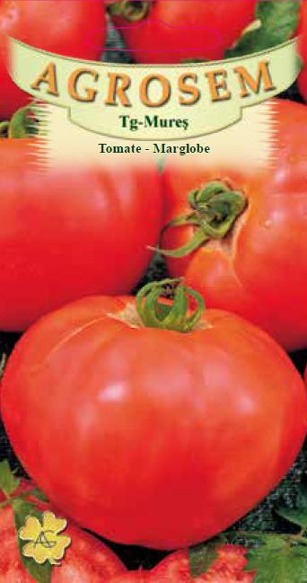 Seminte de Tomate Marglobe - AS - Lycopersicon esculentum