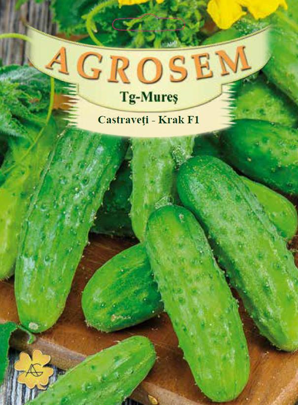 Seminte de Castraveti cornichon Krak F1 - AS - Cucumis sativus