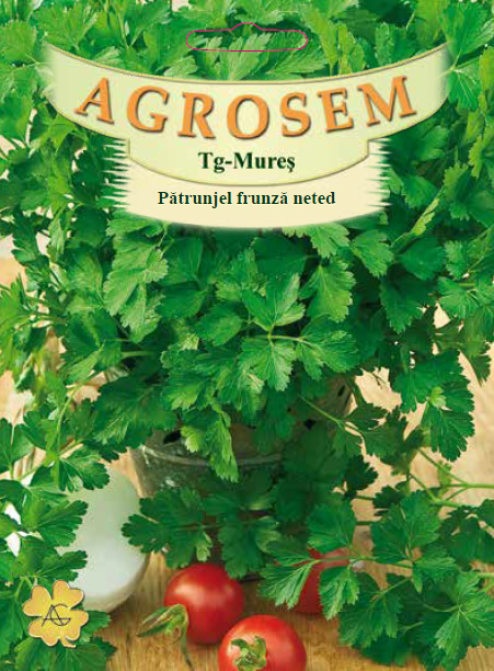 Seminte de Patrunjel frunza neted - 100g - AS - Petroselinum crispum