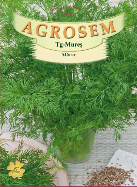 Seminte de Marar - 100g - AS - Anethum graveolens