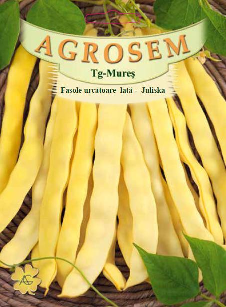 Seminte de Fasole urcatoare galbena Juliska - 100 g - AS - Phaseolus vulgaris