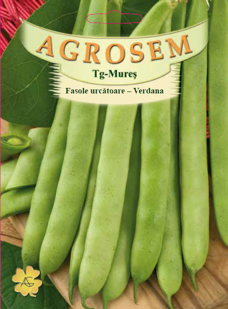 Seminte de Fasole pitica Verdana - 40g - AS - Phaseolus vulgaris var. nanus