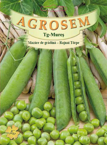 Seminte de Mazare de gradina timpurie Rajnai Torpe 500 g - AS - Pisum sativum