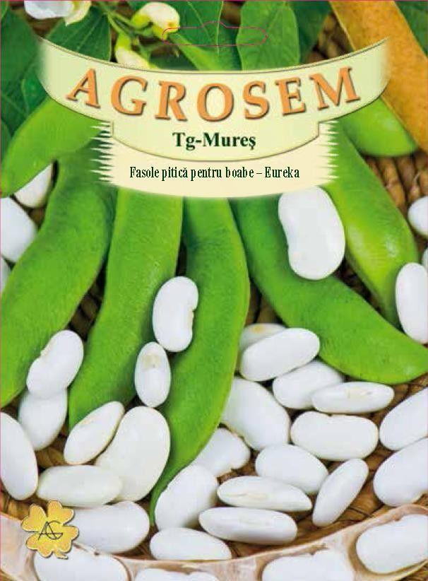 Seminte de Fasole pitica pentru boabe Eureka 25 kg - AS - Phaseolus coccineus